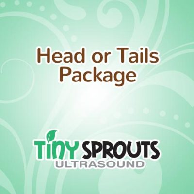 packages-headortails